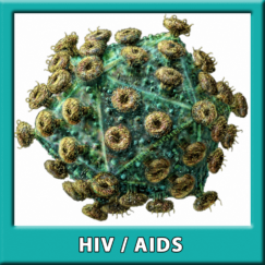 HIV TYPE 1 AND TYPE 2